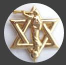 Star of David/Moroni Jewish Mormon Lapel Pin also on Amazon